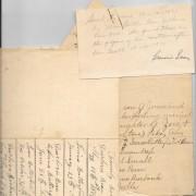 #33 Dearborn Bean Family Notes